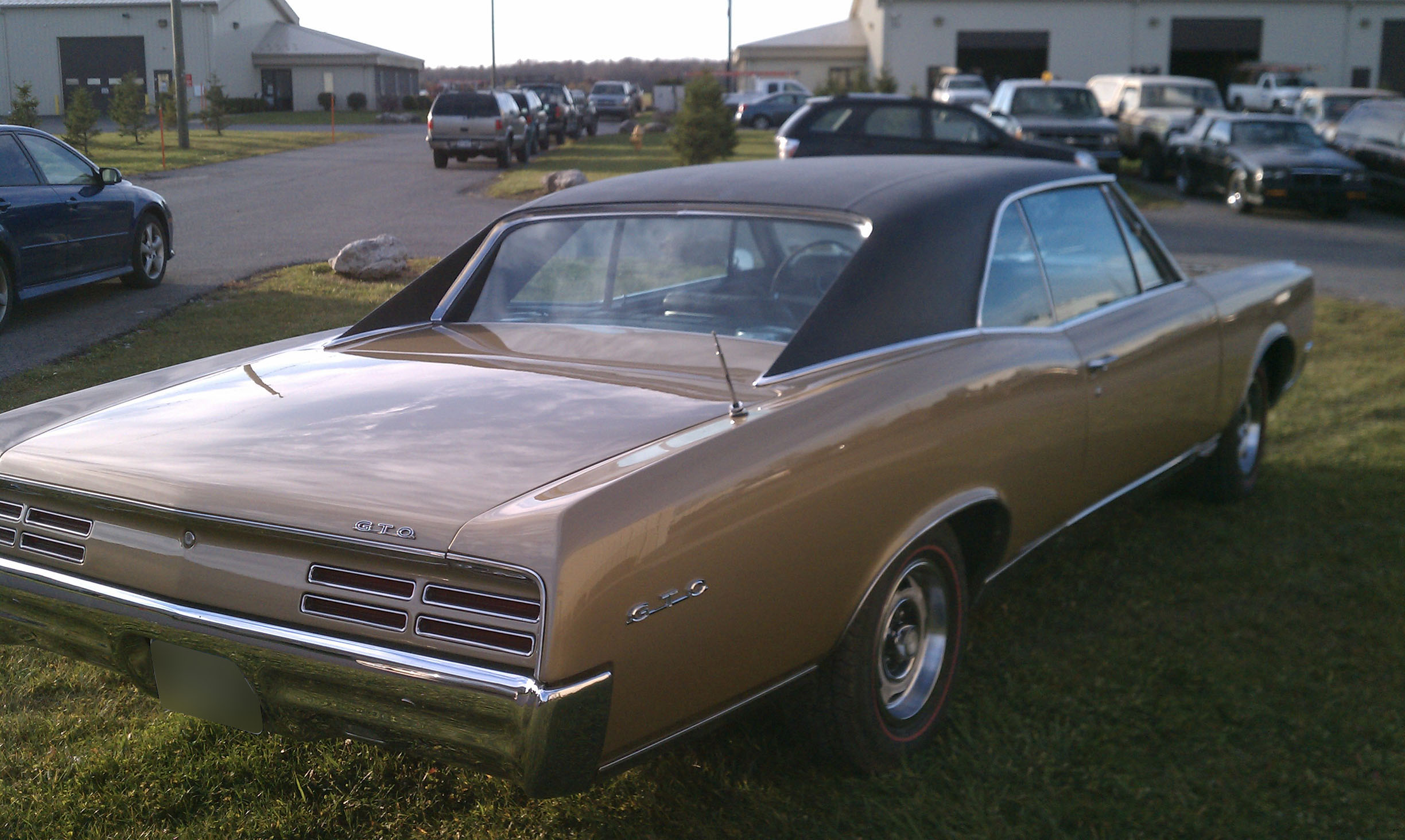 1967 pontiac gto s s auto body of clarence inc. Black Bedroom Furniture Sets. Home Design Ideas